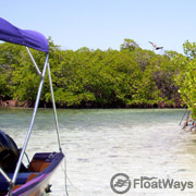 Island Hopping Thumbnail